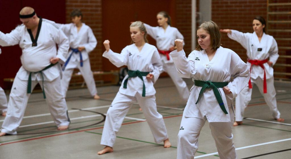 Taekwondon harjoittelua muodossa.