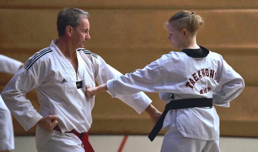 Taekwondon pariharjoittelua.